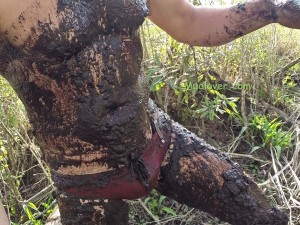 muddy-red-speedo